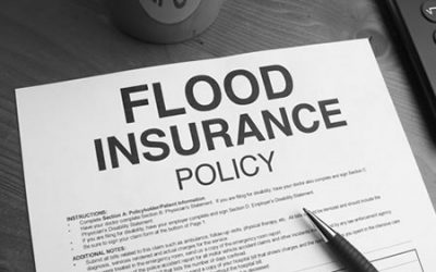 FEMA versus Private Flood Insurance: What Are Your Options?